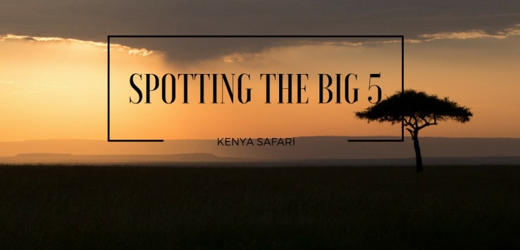 Spotting the big 5 in Kenya by The Talking Trails